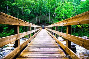 scary-wooden-bridge-crossing-9809889