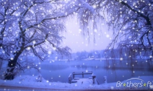 winterscenes_snow_screensaver-34925-1233908191